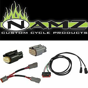 NAMZ Custom Cycle